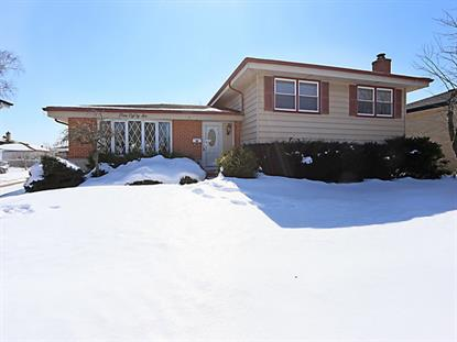 586 Forest Preserve Drive Wood Dale, IL MLS# 08854935