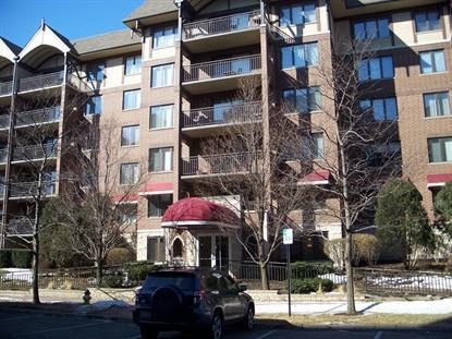 10 S Wille Street Mount Prospect, IL MLS# 08856916