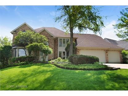 8701 Lake Ridge Drive Darien, IL MLS# 08857027
