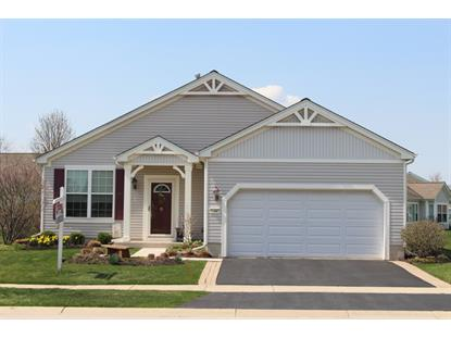 11447 Stonewater Crossing  Huntley, IL MLS# 08859565