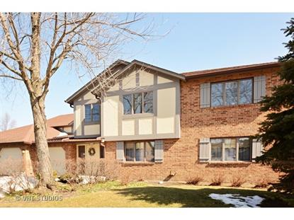 13201 N COUNTRY CLUB Court Palos Heights, IL MLS# 08859644