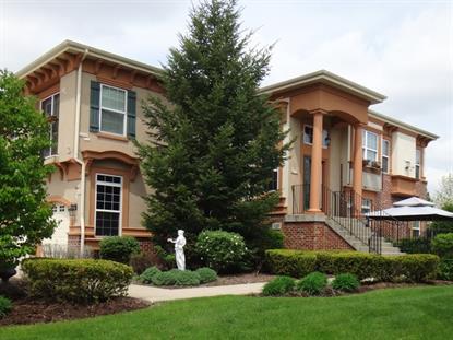 329 Veneto  Bloomingdale, IL MLS# 08868753