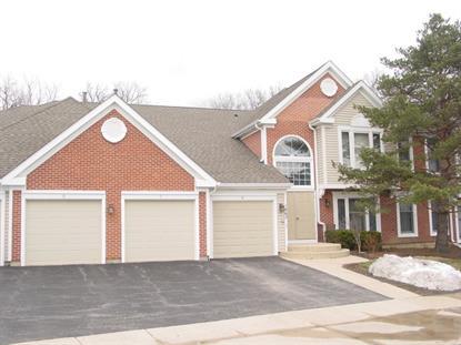 1862 Fox Run Drive Elk Grove Village, IL MLS# 08874195