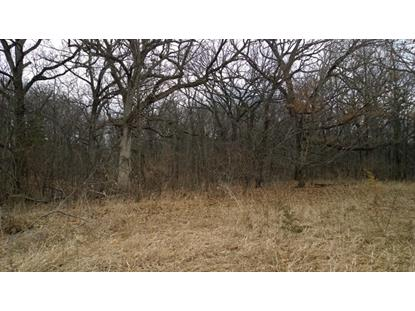 Lot 4 Griswold Springs Road Plano, IL MLS# 08875904