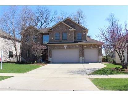 451 Pond View Lane Bartlett, IL MLS# 08883999