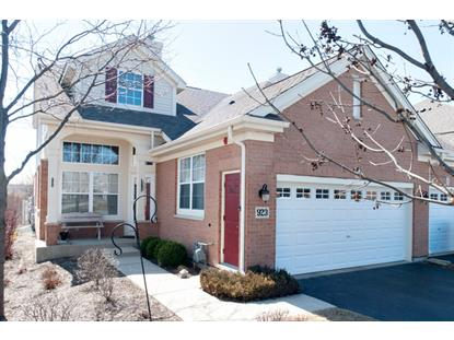 923 Winners Cup Court Naperville, IL MLS# 08886012