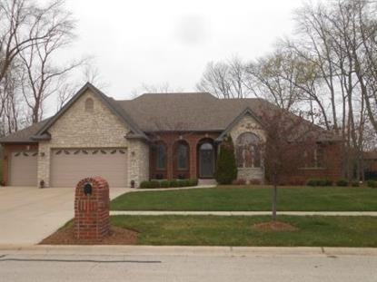 1064 FOREST VIEW Drive Morris, IL MLS# 08894507
