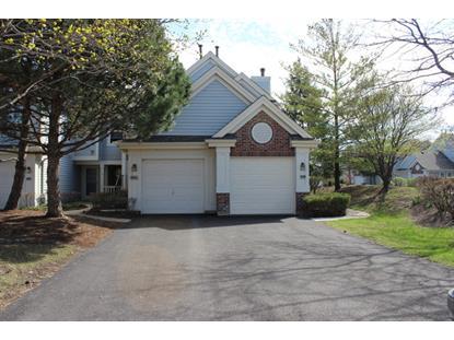 828 Spring Creek Court Elk Grove Village, IL MLS# 08896014