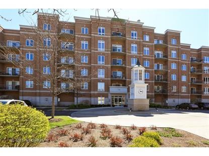 799 Graceland Avenue Des Plaines, IL MLS# 08908899