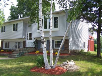 225 N Braintree Drive Schaumburg, IL MLS# 08911380