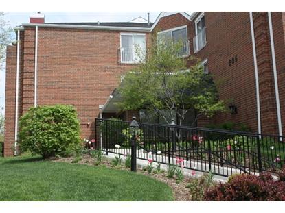 805 Leicester Road Elk Grove Village, IL MLS# 08916576