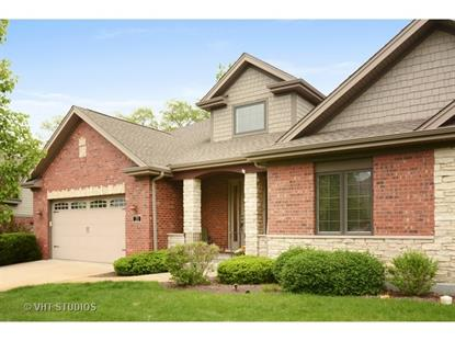 21 Turnberry Drive Palos Heights, IL MLS# 08929993