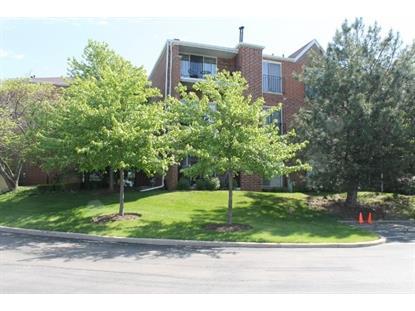 815 Leicester Road Elk Grove Village, IL MLS# 08931983