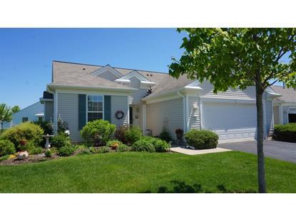 12872 Norfolk Drive Huntley, IL MLS# 08934048