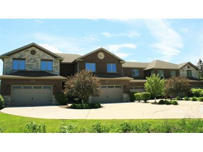 6 S. 133 Maple Hill Court Downers Grove, IL MLS# 08940811