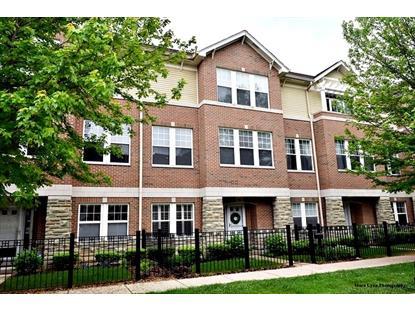 352 W Seminary Avenue Wheaton, IL MLS# 08941432