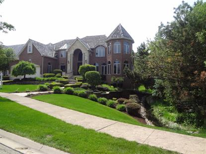 103 Settlers Drive Naperville, IL MLS# 08945042