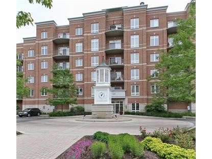 799 Graceland Avenue Des Plaines, IL MLS# 08945513