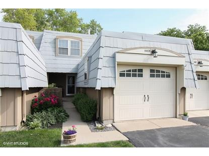 660 Versailles Circle Elk Grove Village, IL MLS# 08948161