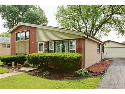 6913 175th Place Tinley Park, IL MLS# 08952204