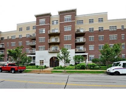 965 Rogers Street Downers Grove, IL MLS# 08956428