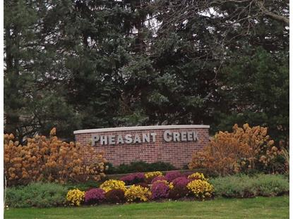 3050 Pheasant Creek Drive Northbrook, IL MLS# 08967013
