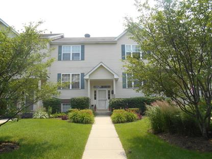 469 E Willow Street Elburn, IL MLS# 08969185