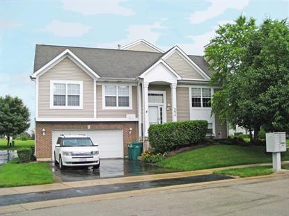 3474 Meadow Lily Drive Joliet, IL MLS# 08970465