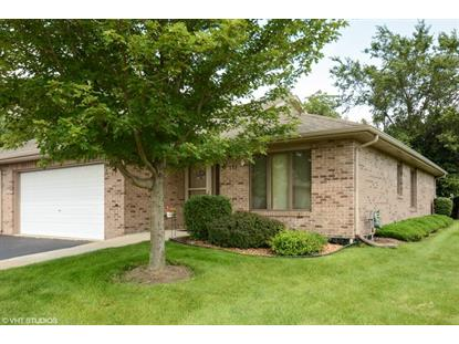 133 Batson Court New Lenox, IL MLS# 08971947