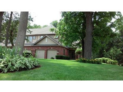 3216 LIGHTNING Court New Lenox, IL MLS# 08972103