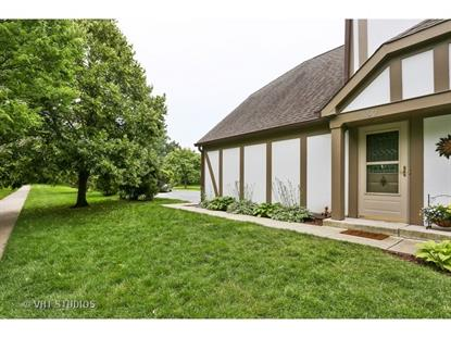 7302 Canterbury Place Downers Grove, IL MLS# 08977383