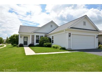 13913 REDMOND Drive Huntley, IL MLS# 08983233