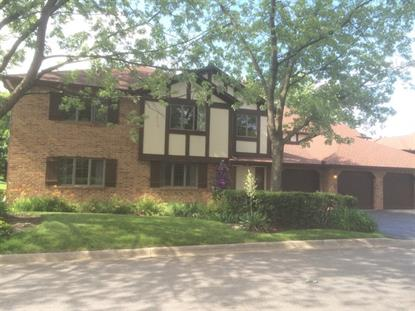 7698 W Arquilla Drive Palos Heights, IL MLS# 08985482