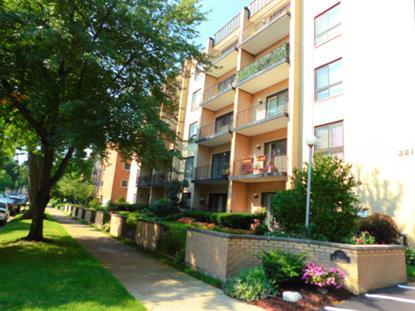 221 N Kenilworth Avenue Oak Park, IL MLS# 08991152