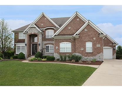13020 SILVERLEAF Court Plainfield, IL 60585 MLS# 08993865