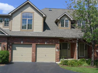 3237 Lightning Court New Lenox, IL MLS# 08994090