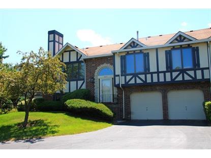 9271 Drummond Drive Tinley Park, IL MLS# 08998108