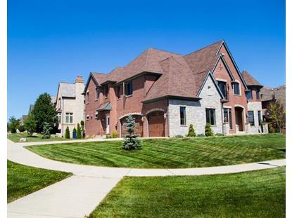 11 Baker Lane Naperville, IL MLS# 08998865