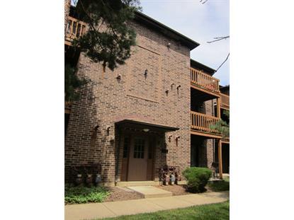 2234 ABBEYWOOD Drive Lisle, IL MLS# 09002461