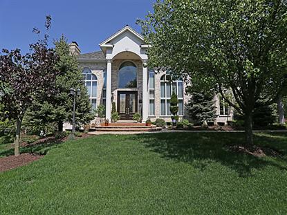 1575 Far Hills Drive Bartlett, IL MLS# 09002586