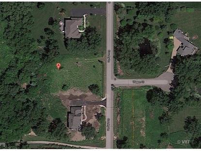 20878 N Country Lane Deer Park, IL MLS# 09010112