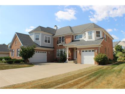 1356 GRANTHAM Drive Schaumburg, IL MLS# 09010198