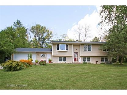 26672 Orchard Avenue Antioch, IL MLS# 09010313