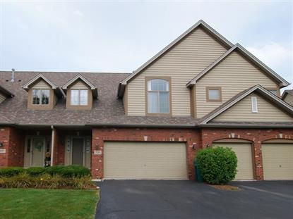 3219 Lightning Court New Lenox, IL MLS# 09013569