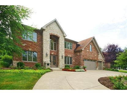 25 Webster Lane Schaumburg, IL MLS# 09013638