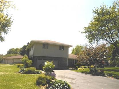 246 Thrasher Street Bloomingdale, IL MLS# 09014543