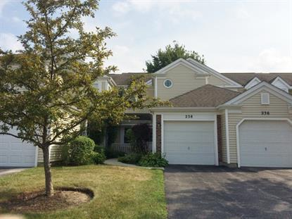 238 University Lane Elk Grove Village, IL MLS# 09016765