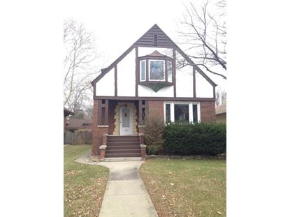 129 Franklin Ave, River Forest, IL 60305