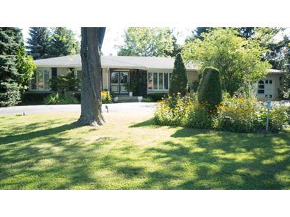 271 Thrasher Street Bloomingdale, IL MLS# 09018769