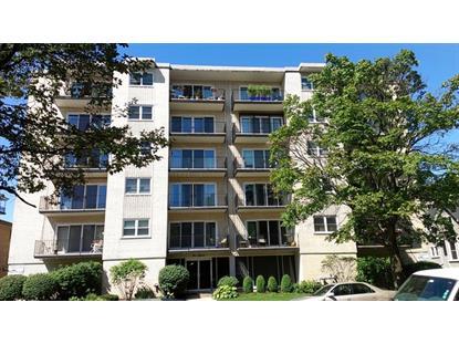 215 Marengo Avenue Forest Park, IL MLS# 09019675